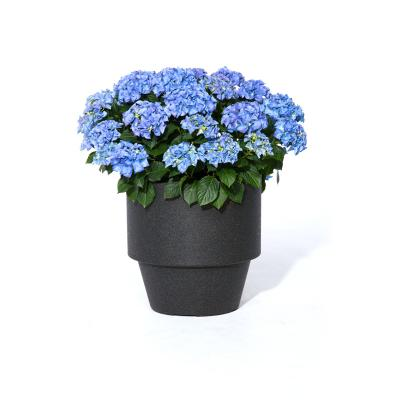 Montreaux Round  Planter